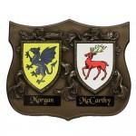 bronze-double-family-crest-plaque-irish-gifts