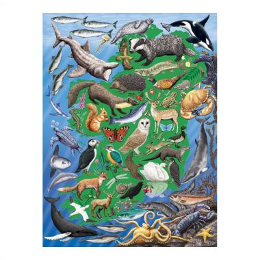 Wild Ireland 1000 piece jigsaw, made in Ireland by Gosling Games