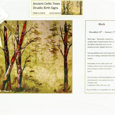 celtic birthday gift druidic birth sign birch