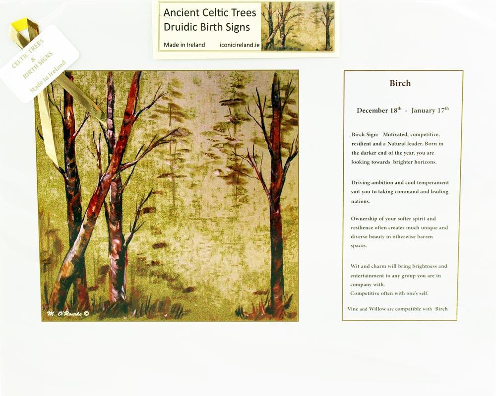 Druidic Birth Sign & Celtic Tree: Birch Dec 18th - Jan 17th ...