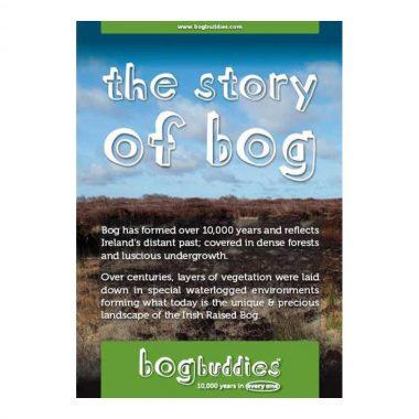 The story of bog buddies