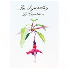 Sympathy Card with Fuchsia image and text in Irish and English