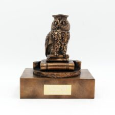 personalised graduation gift wise owl by Rynhart, made in Ireland