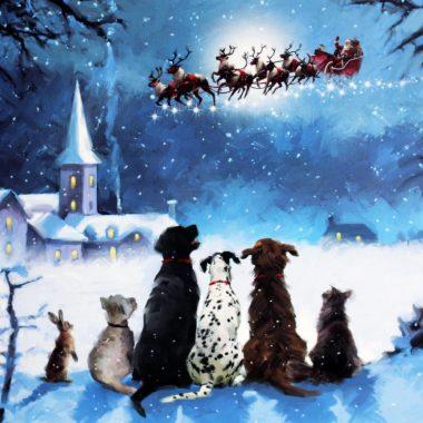 Christmas Cards Ireland, made in Ireland