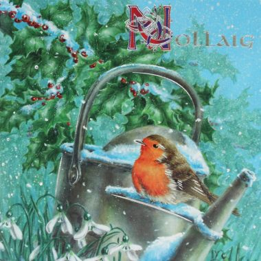 Robins Christmas Cards made in Ireland